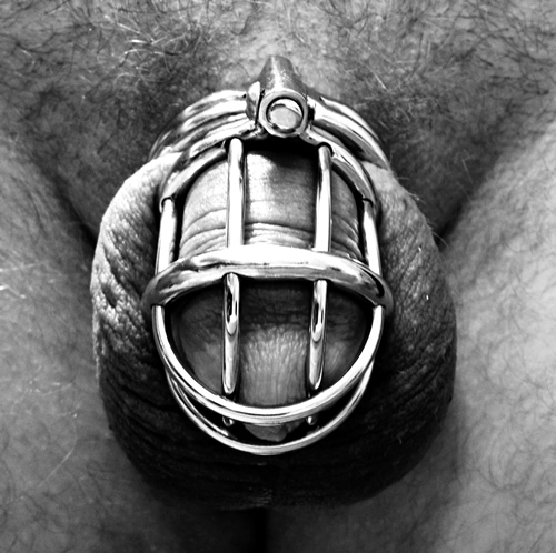 Locking cock in jailbird chastity cage