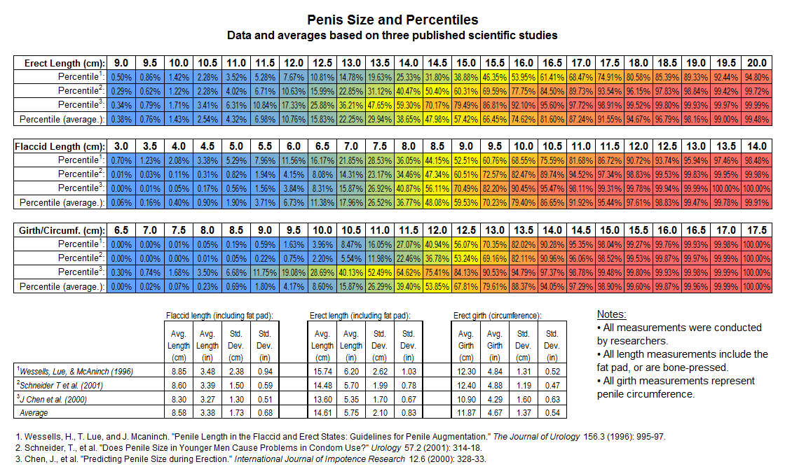 average+penis+size+chart.png
