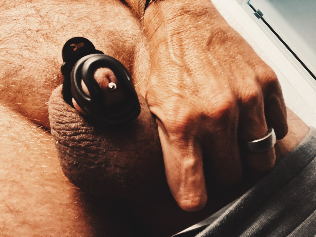 Evotion 8 male chastity device being worn