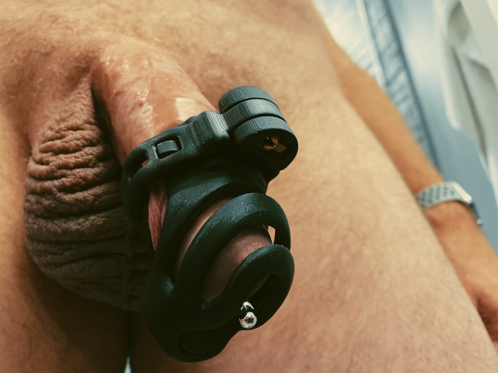 Evotion 8 male chastity device being worn without its base ring